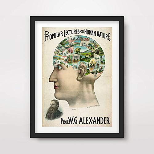 VICTORIAN BRAIN MIND MEDICAL ART PRINT ANATOMICAL ANATOMY MEDICINE HUMAN BODY BIOLOGICAL CHART DIAGRAM ILLUSTRATION VINTAGE ANTIQUE Poster Home Decor Wall Picture A4 A3 A2 (10 Size Options)