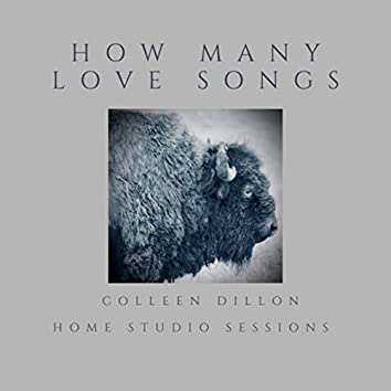 How Many Love Songs