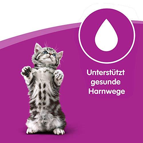 Whiskas Katzen-/Nassfutter Multipack Junior für junge Katzen Klassische Auswahl in Sauce, 48 Portionsbeutel (4 x 12 x 100 g) - 3