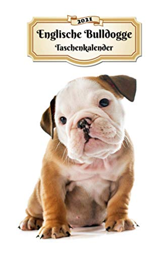 2021 Englische Bulldogge Taschenkalender: 107 Seiten, DIN A5   12 Monate Kalender   Terminplaner   Tagebuch   Terminkalender   Organizer für Hundeliebhaber