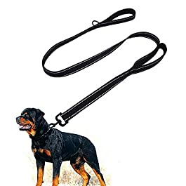 Dog Leash for Large Dogs – 2 Handles for Extra Control, Leash Traffic Control Dual Padded Handle Heavy Duty 5ft Long Training Leash Lead Greater Control Safety Training Perfect for Large Medium Dogs