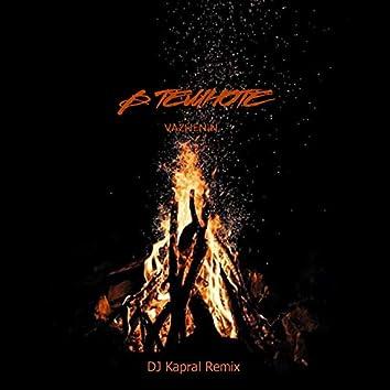 В темноте (DJ Kapral Remix)