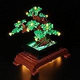Morton3654Mam Juego de luces LED para árbol Lego Bonsai 10281, juego de iluminación compatible con bloques de construcción Lego 10281, sin set Lego