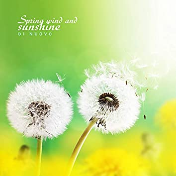 Spring wind and sunshine
