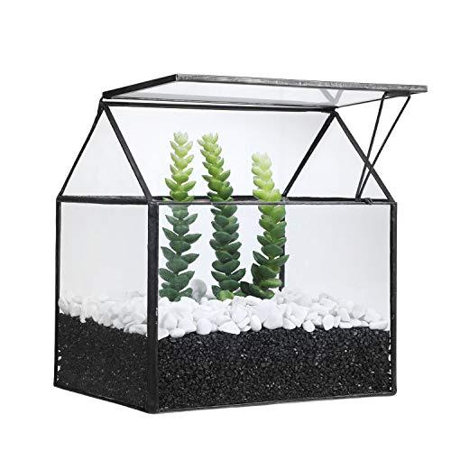 Asvert Geometrische dekorative Terrarium Cube geneigte Klarglas Pflanzer Tischplatte schwarz kleine Air Plant Halter Display Box saftige Moos Blumentopf Container (style11)