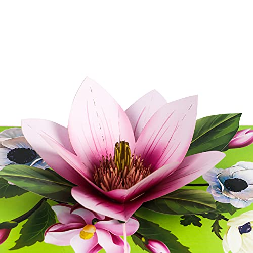 TRUANCE Pop Up Greeting Card Magnolia Flower- 3D Cards For Birthday, Anniversary, Mothers Day, Thank...