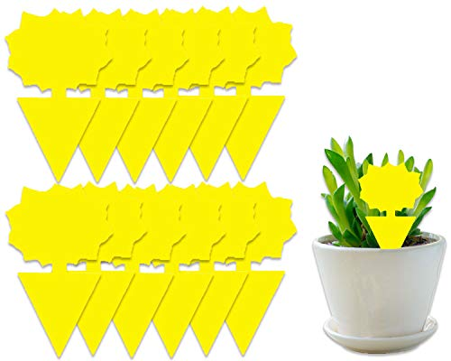 COSYWORLD 15 Pack Yellow Sticky Bugs Traps for Indoor/Outdoor Use, Gnat Trap for Flying Plant Insect Such as Fungus Gnats, Whiteflies, Aphids, Fruit Fly, Leafminers- Disposable Glue Trappers