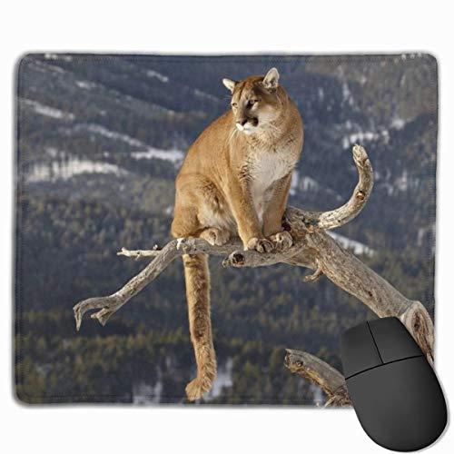 Puma Ramas Montañas Hierba Sentado Gato Grande Alfombrilla de ratón para Juegos Alfombrilla de Goma Antideslizante para el hogar y la Oficina Alfombrilla de ratón