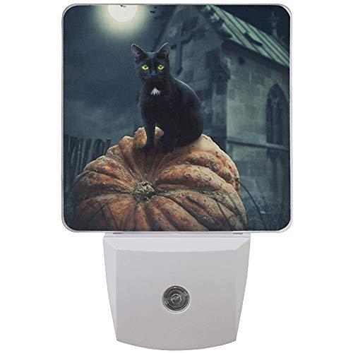 L-e-d Nachtlicht Halloween Katze Tier Kürbis,Auto Senor Dämmerung bis Morgendämmerung Nachtlicht Plug-in für Kinder Baby Mädchen Jungen Erwachsene Zimmer