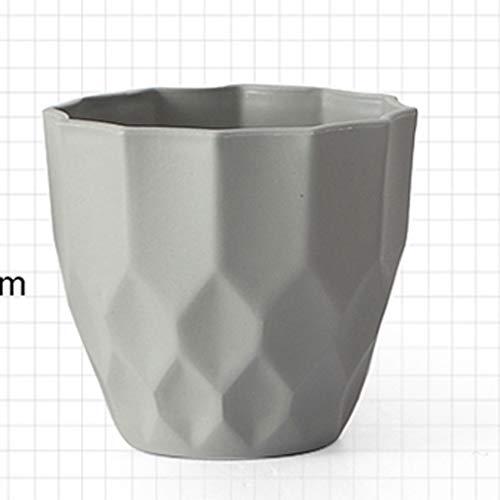 HJHJK Vaso da Fiori Smerigliato, Flowerpot Piccolo, Vaso di piantatura succulente Rotonda, Vaso di Giardinaggio della pianta Verde del Tavolo del Balcone (Color : C)