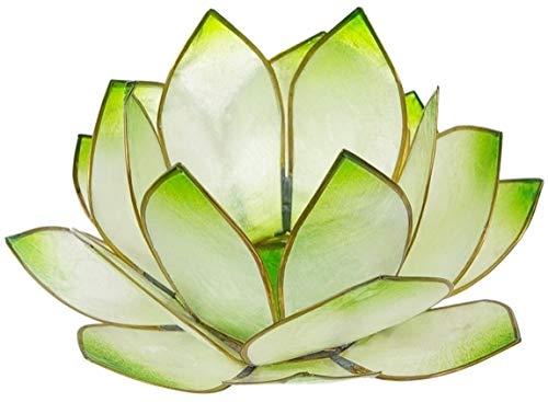 Lotus-Licht Sonnenaufgang limonengrün