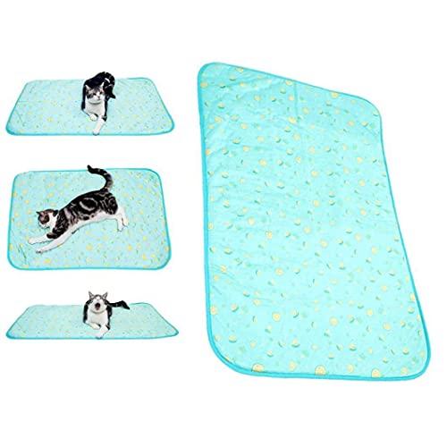Naisicatar Estera de enfriamiento para Perros Almohadilla de autocomenización de Verano Confort para pequeños Perros Grandes Mascotas Cats Cama de Cachorro Sofá con Cremallera, Fruta Azul- 50 * 70