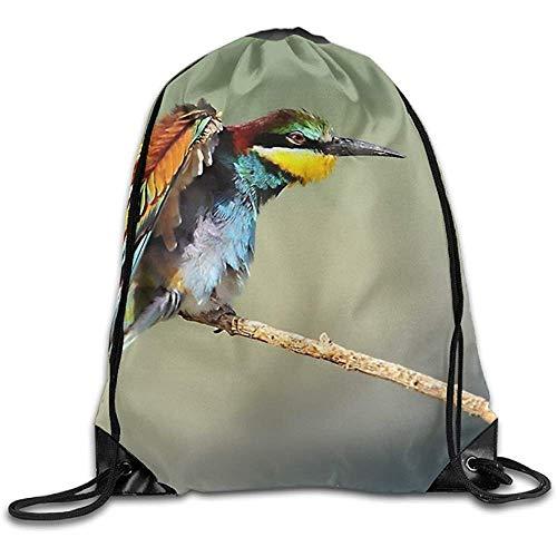 AllenPrint Rucksack Kordelzug,Nature Birds Bee Eaters Leichte Kordelzug-Cinch-Taschen Für Das Klettern Beim Reisen 36x43cm