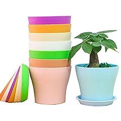 Idea Regalo - 8 Pezzi Vaso di Fiori balcone Colorati vasi in Plastica per Fiori, per Arredo Casa, Giardinaggio, Vasi da Fiori per Interni con Pallet (14cm)
