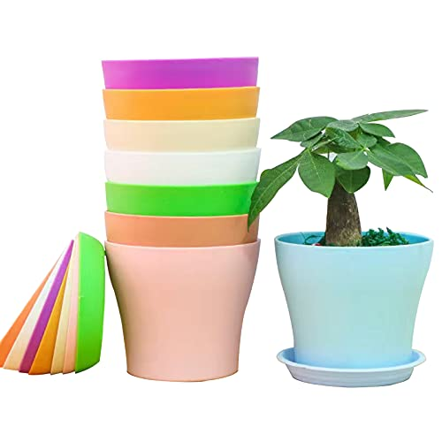 8 Pezzi Vaso di Fiori balcone Colorati vasi in Plastica per Fiori, per Arredo Casa, Giardinaggio, Vasi da Fiori per Interni con Pallet (14cm)