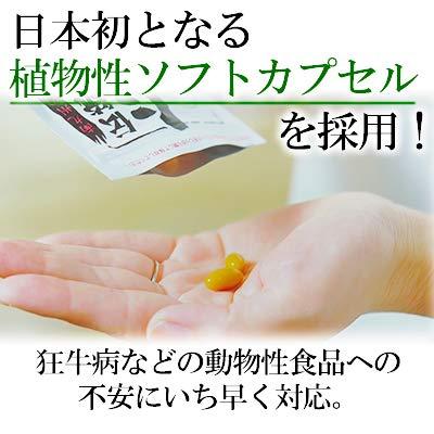 健康家族伝統にんにく卵黄31粒入(1粒405mg)