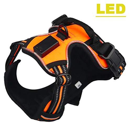FIF Pet Product LED-Geschirr Tailup Nylon Blinklicht Sicherheit Hundegeschirr Leine Seil Gürtel LED Hundehalsband Weste, Orange, S