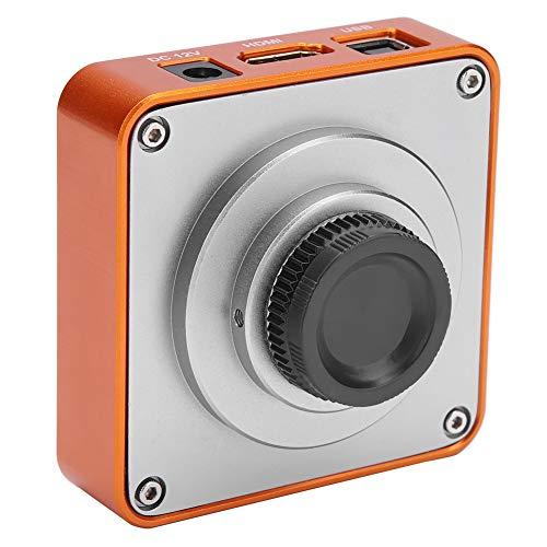 Mikroskop Kamera Set, HDMI USB C-Mount Industrie Mikroskop Kamera 21MP CMOS-Sensor 2K 1080P HD Videokamera Unterstützt bis zu 64 GB TF-Karte, 220V