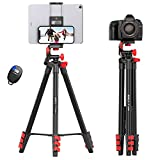 KINGJOY 52' Phone Tripod Stand Video Camera Tripod for Nikon Canon DSLR Max Load 6.6 lb with Tablet Phone Mount, Carry Bag and Remote Shutter for Travel TikTok Video Recording and Photography