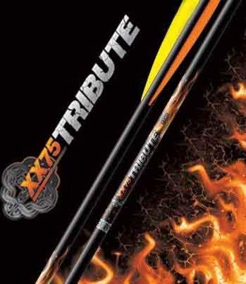 Easton 6 x Archery XX75 Tribute Arrow Arrows Target for Recurve Compound Bows 1716 Spine 29 long