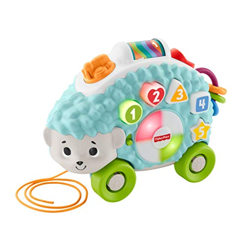 Fisher-Price Linkimals Happy Shapes Hedgehog - Interactive Educational Toy with Music and Lights for Baby Ages 9 Months & Up, Multi Color