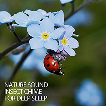 Nature Sound Insect Chime For Deep Sleep