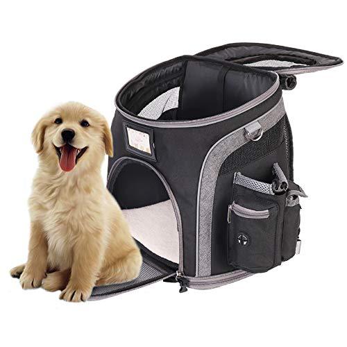 Bingopaw Hunde Rucksäcke Haustier Reise Rucksack, Atmungsaktive Haustiertragetasche Outdoor Mit USB für Hunde Katzen Welpen zu Wandern Reisen Camping