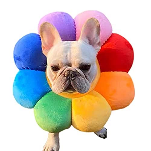 BANGNA Collar de recuperación Ajustable para Mascotas, Protector de círculo isabelino, Protector de Cono para Mascotas