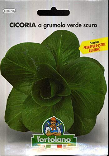 Sementi orticole di qualità l'ortolano in busta termosaldata (160 varietà) (CICORIA A GRUMOLO VERDE SCURO)