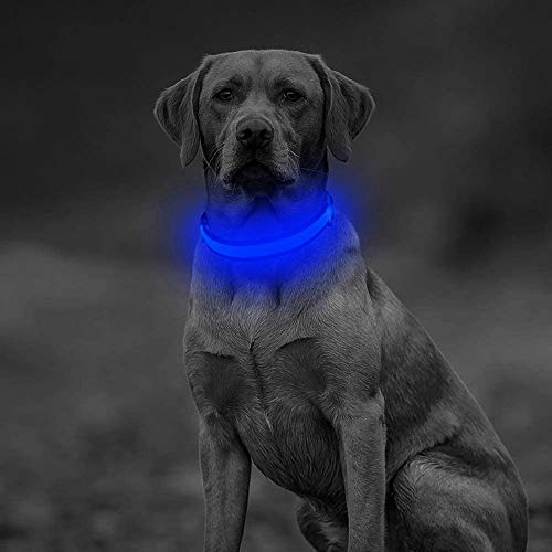 Clan-x LED Dog Collar, USB Rechargeable Flashing Pet Safety Collar, Adjustable Mesh Webbing Light Up Collar Make Your Dogs Seen and Safe at Night(L, Blue)