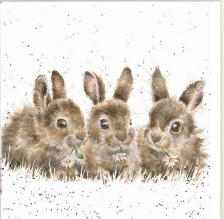"""Wrendale Designs Impresión de conejo sobre lienzo cuadrado blanco 20 cm """"Daisy Chain"""""""