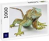 Lais Puzzle Iguana 1000 Pezzi