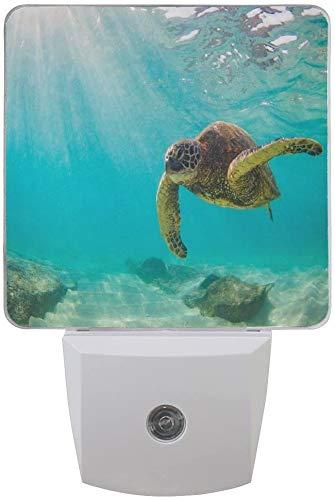 1 paquete de tortuga marina océano subacuática LED luz nocturna atardecer hasta el amanecer sensor Plug en la noche Home Decor lámpara de escritorio para adultos