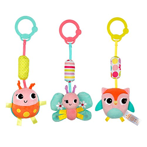 Bright Starts - 8674 - Hochet - Pretty in Pink Chime Along Friends