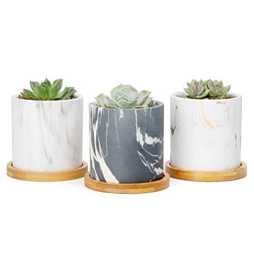 Greenaholics Succulent Plant Pots - 3 Inch Small Ceramic Cylindrical Planter Containers for Cactus or Flowers with Drainage Hole and Bamboo Tray - Marble Set of 3