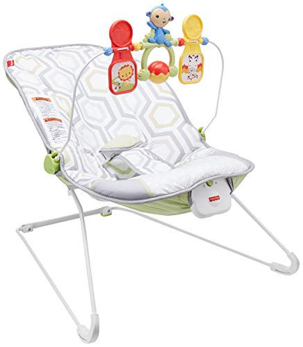 Fisher-Price Toys Geo Meadow Bouncer