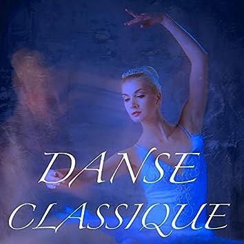 Danse Classique: Musique pour Pas de Deux, Ballet Classique pour Jambe et Arabesque pour Devenir une Grande Danseuse