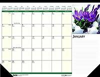 バルク 2020 フローラルデスクパッドカレンダー 12ヶ月 1月~12月: HOD159 (デスクパッドカレンダー18枚)