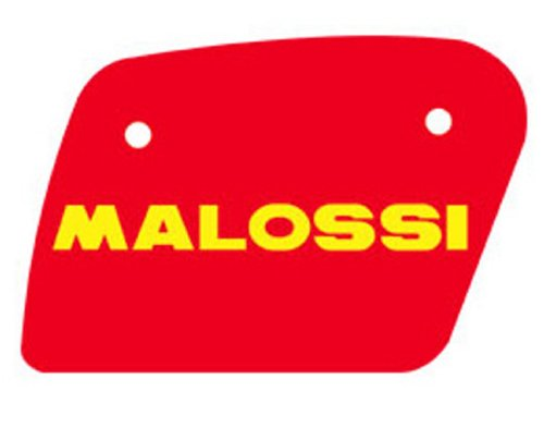 Filtro de aire MALOSSI de accesorios para Aprilia Leonardo 125de 150ccm 4T Lc