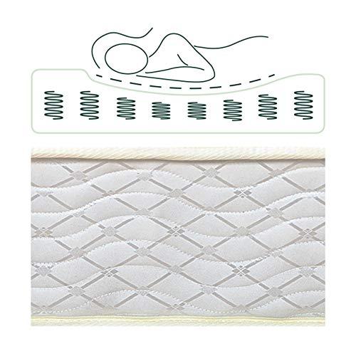 Zinus 8 Inch Foam and Spring Mattress / CertiPUR-US Cert   ified Foams / Mattress-in-a-Box, Full