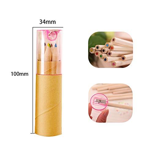 Children's colored short wooden pencils, 12 colors in tubes; soft core pre-ground natural wood pencils (unpainted)