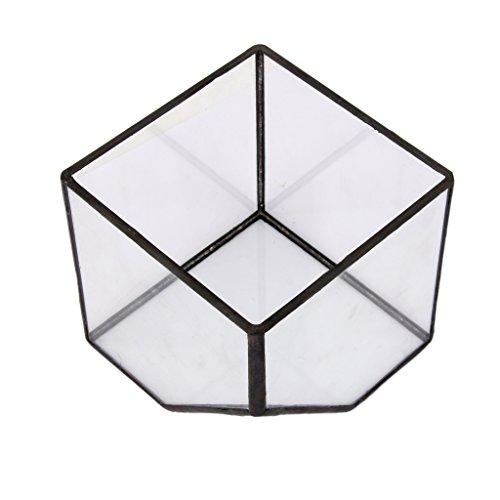joyMerit Serra di Vetro della Serra del Giardino delle Fate del Cubo del Terrario - S