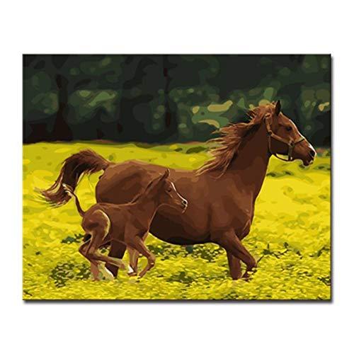 Canvas Foto's Schilderij Dier Paard door Numbers Kleurplaten Acryl Aquarel Muur Art Kids Woonkamer Decor- 60x75cm geen Frame