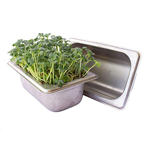 Trellis + Co. Stainless Steel Hydroponic Microgreens Growing Kit - Infinitely Reusable Hydroponic Kit for Microgreen Seeds & Wheatgrass Seeds - Easy Soil-Free Sprouting System for Your Indoor Garden