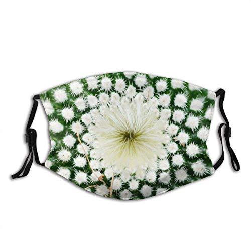 Gesichtsschutz Mundschutz Kaktus Wüste Blume Gelb Plural Zweiter Plural Sturmhaube Mund Bandanas Halsmanschette mit 2 Filtern