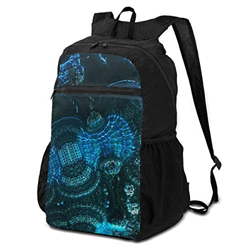 3D Abstract Fractal Outdoor Travel Backpack for Men and Women,Foldable/Lightweight/Waterproof/Large-Capacity