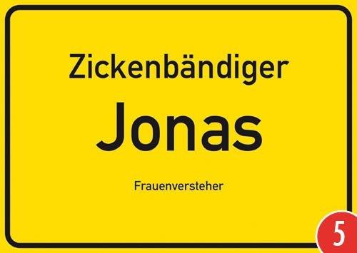 5er-Pack: Postkarte Kunststoff +++ NAMENSSCHILD von modern times +++ JONAS +++ ARTCONCEPT ZICKENSCHILDER