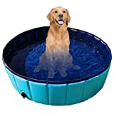 Gravitis Pet Supplies - Piscina pieghevole per animali domestici con pannello rigido (extra large, 160 x 30 cm)