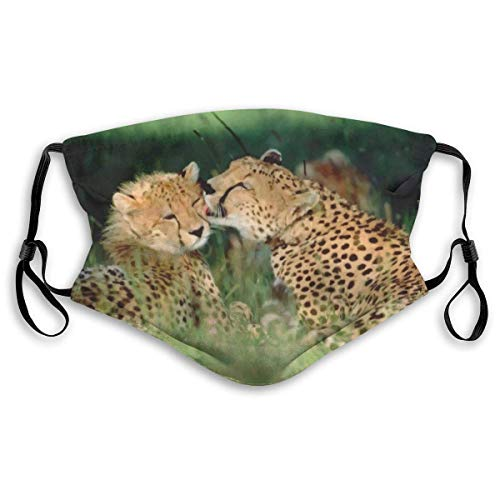 Cheetah Love Filter verstelbare maskers voor heren en dames.