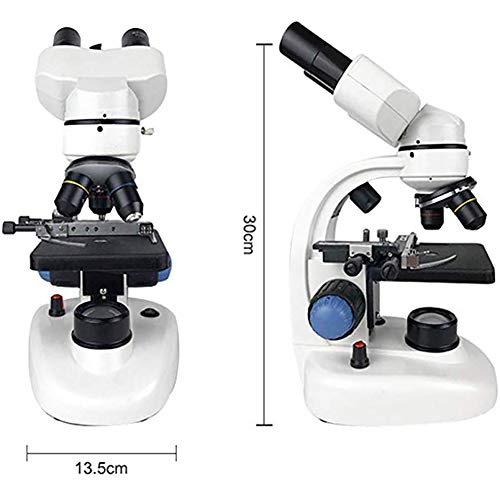 WXX Einstellbarer Fokus 40-1000X Binokulares Weitwinkelmikroskop, Zusammengesetztes Mikroskop Mit Doppelter LED-Lichtquelle Zur Beobachtung Von Insekten Auf Steinmünzen